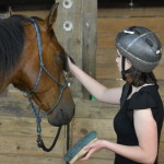 Horses and on the Road Homeschooling are the Perfect Combination
