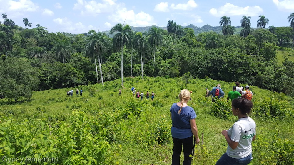Overlooking the rain forest as we hike during the reforestation activity with Fathom Impact Travel