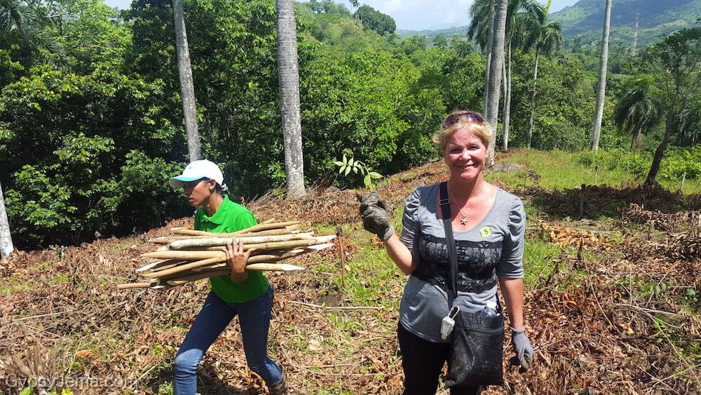 Planting trees during a reforestation project in Yasica with Fathom Impact Travel